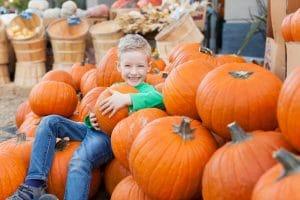 Fall Fun And Pumpkin Festivals
